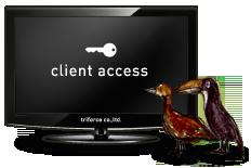 cient access